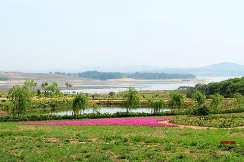 花仙子景区