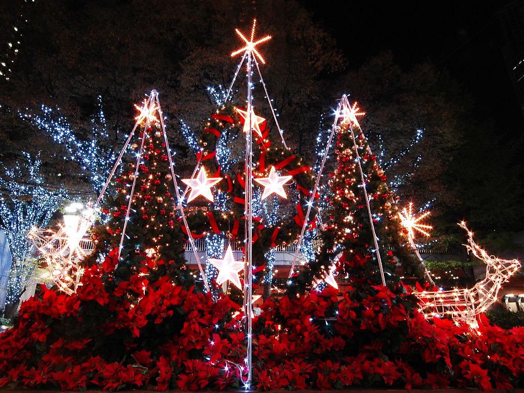 圣诞节(Navidad)