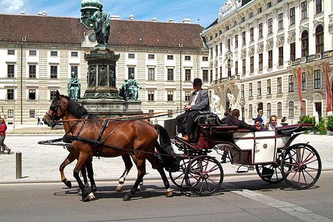 维也纳观光马车