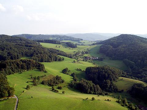 奥登森林旅游景点图片