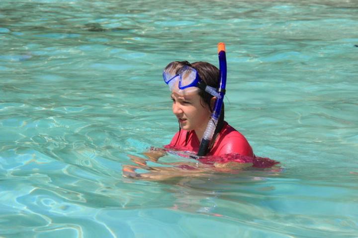 """""""这里卫生条件好,午餐为自助餐,并且平台底部还提供玻璃平台给人观赏海底景色,如果条件允许,强烈推荐后者_芭雅岛潜水""""的评论图片"""