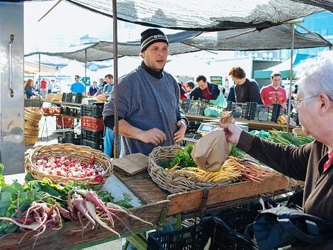 轮渡广场农贸市场旅游景点图片