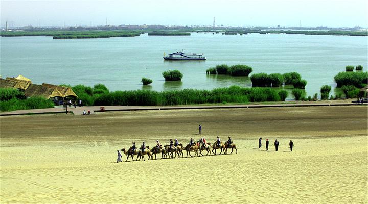 沙湖旅游图片