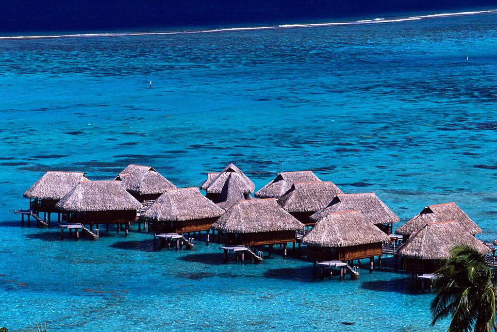 茉莉亚岛 热带丛林探索之旅