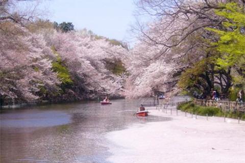 上野恩赐公园