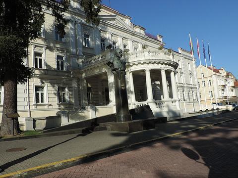 立陶宛总统府旅游景点图片