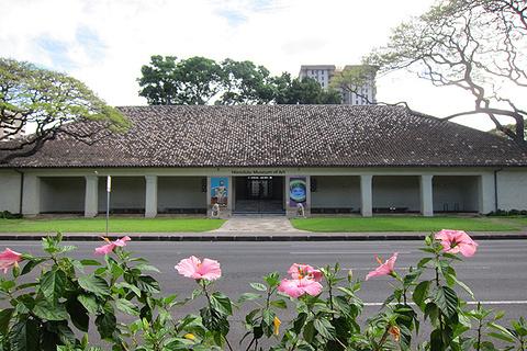 檀香山艺术学院