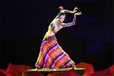 藏羌歌舞晚会