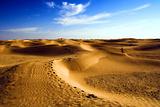 浓情沙漠游