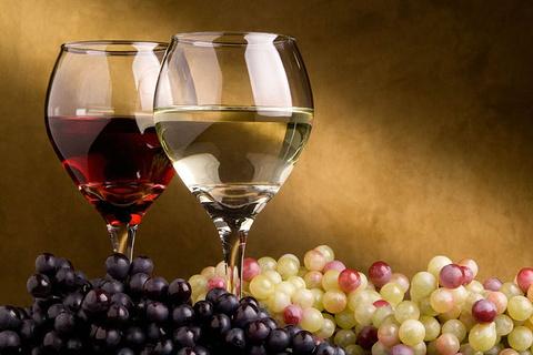 食品& 葡萄酒