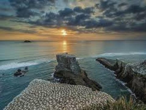 穆里怀塘鹅栖息地旅游景点图片