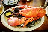 大西洋龙虾