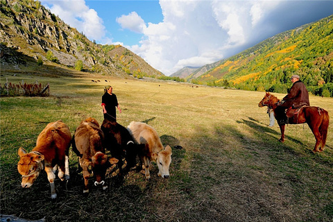 加什哈拉盖牧场