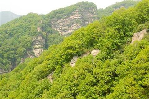 王母山的图片