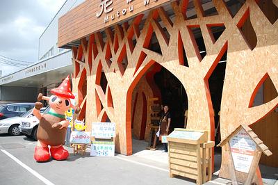 老树根魔法木工坊