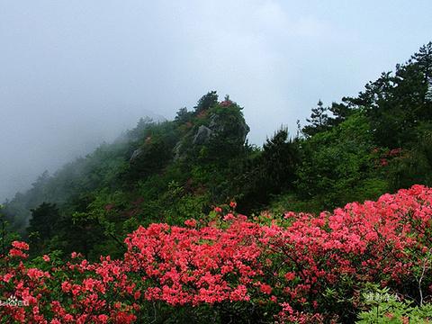 鄣山村旅游景点图片