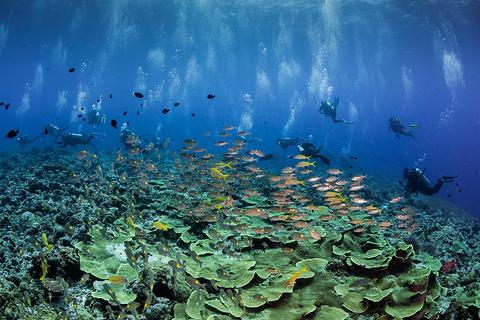 到巴尔拉库达湖潜水