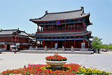 狮子楼•老南京菜馆