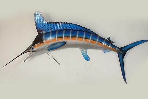 马林鱼标本