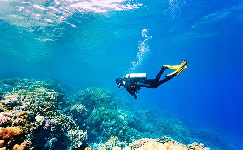 浮潜和水上运动