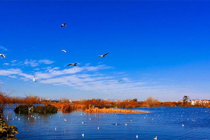 滇池海埂大坝