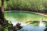 马奎尼温泉
