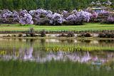 嘎朗国家湿地公园