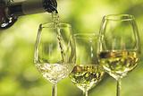 摩泽尔葡萄酒