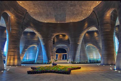 喜玛拉雅美术馆的图片