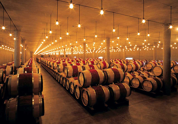 波尔多葡萄酒旅游图片