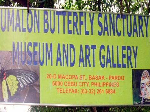 蝴蝶保护区旅游景点图片