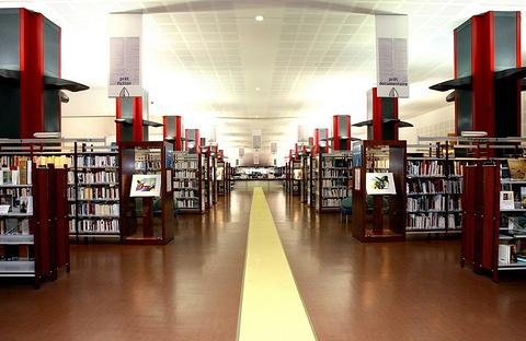 路易斯·尼塞拉图书馆