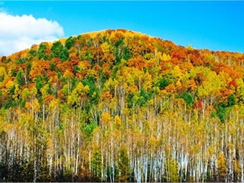 五花山旅游景点图片