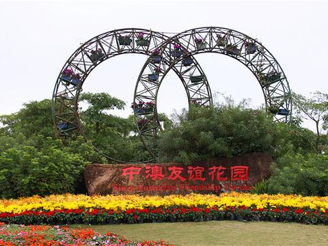 中澳友谊花园旅游景点图片
