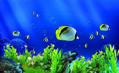 左海公园海底世界