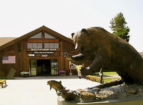 灰熊与狼探索中心