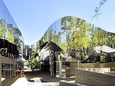 凯恩斯游客中心旅游景点图片