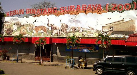 泗水动物园