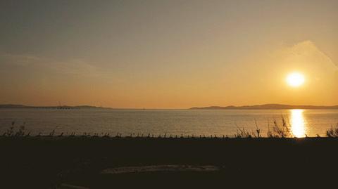 慈湖海堤看日落