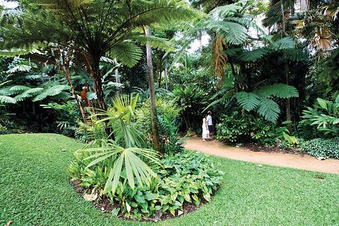 凯恩斯植物园
