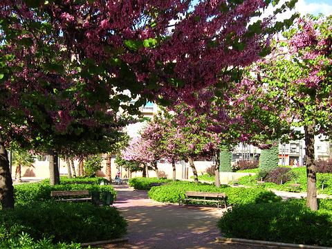 洛尔迦公园旅游景点图片