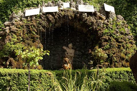 马丁尼花园