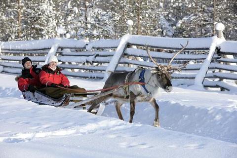 北极生活方式