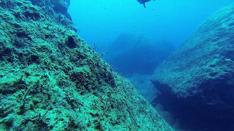 扎金索斯岛潜水