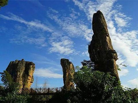 杏林大观园旅游景点图片
