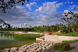 大望京公园