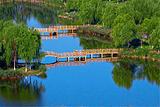 三里河湿地生态公园