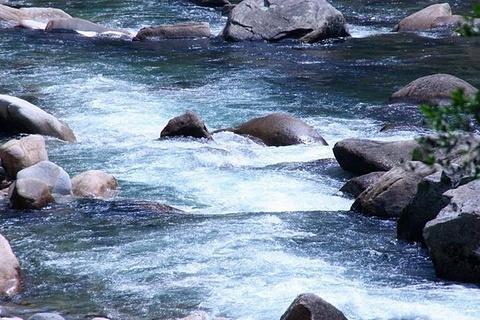 青龙大瀑布的图片