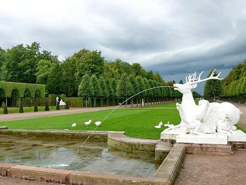 施韦芩根宫宫殿花园旅游景点图片