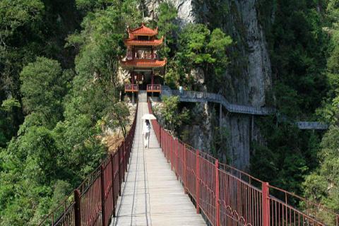 桂林森林吊桥